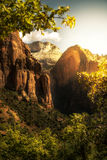 Golden Sunrise in Zion Canyon National Park Royalty Free Stock Photography