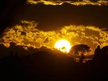 Golden sunset 2 royalty free stock photos