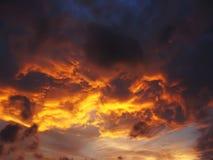 golden sunset royaltyfria bilder
