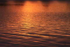 Free Golden Sunset Abstract Stock Images - 32133764