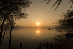 Golden sunset at Ana Sagar lake in Ajmer. India with silhouettes of trees and fisherman stock photography