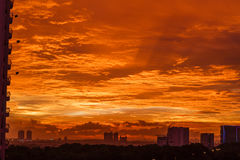 Golden Sunset in the City Royalty Free Stock Photos