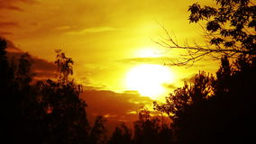 Golden Sunset Through The Clouds In The Treetops. Royalty Free Stock Photography