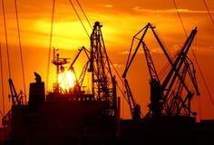 Golden sunset cranes Royalty Free Stock Photos