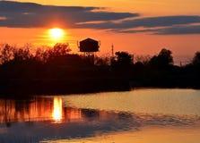 Danube Delta sunset. Golden sunset in Danube Delta, Romania royalty free stock photos