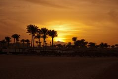 Golden sunset evening in mountain and sea beach. Yellow sunset on mountain pick and palms on seashore with umbrellas. Hot egyptian. Evening and sunset. No Royalty Free Stock Photo