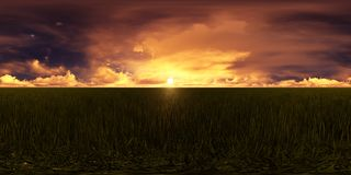 Golden sunset in a grass field. This picture represents a blue sky with golden clouds in a grass field Stock Photography
