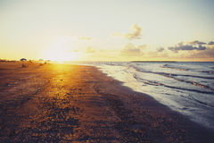 Golden sunset over beach, Ras Elbar, Damietta, Egypt Stock Photography