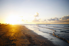 Golden sunset over beach, Ras Elbar. Stock Image