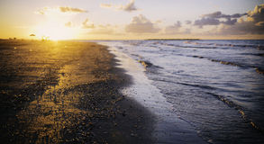 Golden sunset over beach, Ras Elbar, Damietta, Egypt. Stock Images