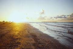 Golden sunset over beach, Ras Elbar, Damietta, Egypt. Royalty Free Stock Images