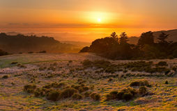 Golden sunset over California coastal meadow and Pacific Ocean stock photo