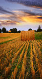 Golden Sunset Over Farm Field Royalty Free Stock Images