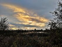 Golden sunset over marshland. Purple clouds lit by bright orange setting sun with sillouetted trees on horizon over marshland stock photography