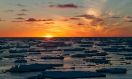 Golden sunset over pack-ice floes, Antarctica stock image