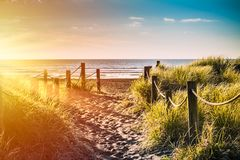 Golden sunset over sandy pathway with grass reeds and wooden posts on each side leading to a beautiful sea bay royalty free stock image
