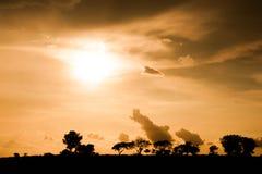 Golden sunset over vast savannah Royalty Free Stock Photography