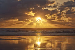 Golden sunset on the pacific ocean coast, USA Royalty Free Stock Image