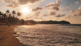 Sunset with palm trees in Sayulita beach royalty free stock image