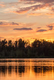 Golden sunset Royalty Free Stock Photography