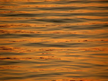 Golden sunset reflection on sea. Waves Royalty Free Stock Photos
