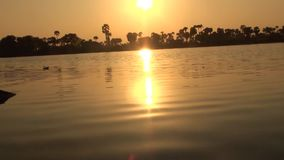 Golden sunset reflection in the water. Golden sunset reflection in the water pond stock footage
