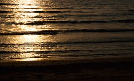 Golden sunset in sea Stock Image