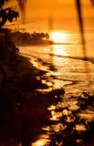 Golden sunset/sunrise shoreline. A golden sunset/sunrise with waves washing against the  shoreline Royalty Free Stock Photos