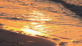 Golden Sunset in Tropical Beach. Beautiful golden colors of the sunset in a tropical beach, waves crashing against the white sand of this idyllic Cuban beach stock video