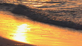 Golden Sunset in Tropical Beach. Beautiful golden colors of the sunset in a tropical beach, waves crashing against the white sand of this idyllic Cuban beach stock video footage