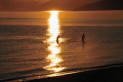 Golden sunset. Two silhouettes in the sea somewhere in the Caribbean at sunset royalty free stock photo