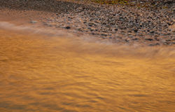 Golden surf. The evening surf colored by sunset Royalty Free Stock Photo