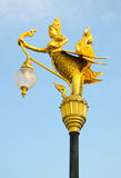 Golden swan lamp on electricity Royalty Free Stock Image