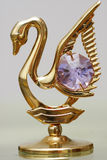 Golden Swans Jewelry with Crystals Royalty Free Stock Photos