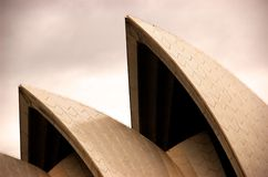 Golden sydney opera house during the fashion week Royalty Free Stock Images