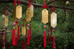 Golden Taoist prayer charms hanging from a tree Royalty Free Stock Photos