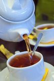 Golden tea. Flowing golden tea into cup. Shoot 30D Royalty Free Stock Photography