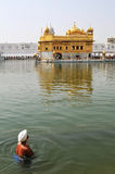 Golden temple Royalty Free Stock Photos