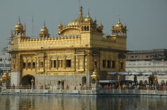 Golden Temple, Amritsar. Golden Temple in Amritsar, India. Entire building is covered in gold leaf Royalty Free Stock Image