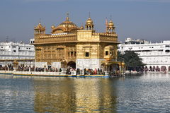 Golden temple. In amritsar headquarters of sikhism Royalty Free Stock Photography