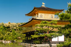 Golden temple in Japan with clear sky Royalty Free Stock Images