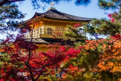 Golden Temple in Kyoto stock photo