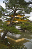 Golden temple in Kyoto Stock Photography