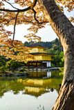 Golden Temple. Nice Golden Temple in Japan Royalty Free Stock Images