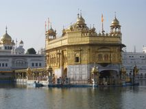 The golden temple of Punjab stock image