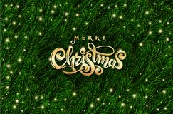 Golden Text Merry Christmas. Realistic green spruce tree branches. Vector festive Fir branches frame. Xmas lettering.