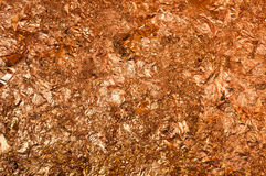 Golden texture background Stock Image