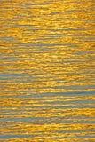 Golden threads. Royalty Free Stock Photos