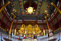 Golden three Buddha statues Royalty Free Stock Images