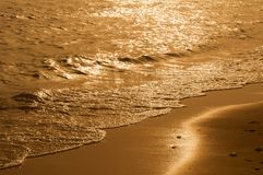 Golden time. On the sea shore Royalty Free Stock Images